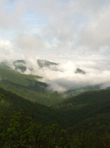 Morning Majesty taken on Blue Ridge Parkway