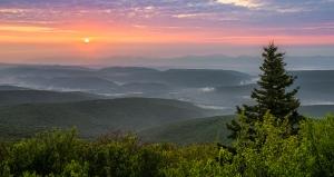 hazy_morning_light_by_mashuto-d7brgj6